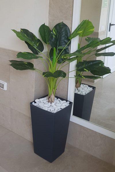צמחיה מלאכותית לבית
