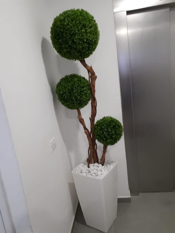 בירוק צמחיה מלאכותית ללובי 10