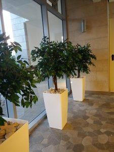 בירוק צמחיה מלאכותית ללובי 7