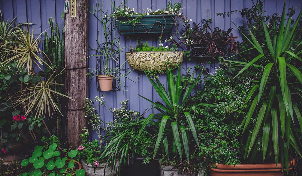 צמחיה מלאכותית למרפסת